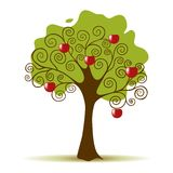 Apple Tree  on a White Background Royalty Free Stock Image