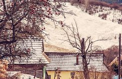 Apple tree and wooden houses in Vlkolinec, Slovakia, red filter Stock Photos