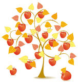 Apple tree in yellow autumn. Abstract apple tree in season autumn with red fruits Royalty Free Stock Image
