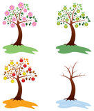 Apple trees Stock Images