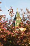 Apple trees blossoming in Kolomenskoe park in spring. A modern reconstruction of the Wooden palace in Kolomenskoe in Moscow royalty free stock photos