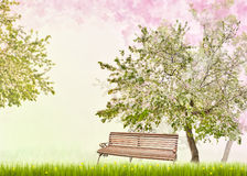 Bench under apple tree with flowers Stock Images