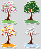 Apple trees in four seasons Royalty Free Stock Photo