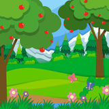Apple trees in the orchard Royalty Free Stock Images