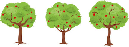 Apple Trees. A set of 3 pre-made, but customizable trees. Everything separated onto different layers to easily convert apple trees to non-apple trees. Reusable Stock Photo