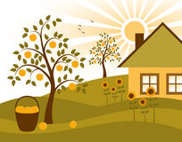 Apple trees, sunflowers and cottage. Illustrated landscape with apple trees, sunflowers and cottage Stock Images