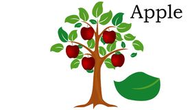 Apple  Trees vector element. vector green. Apple  Trees vector element. vector icon green Stock Images