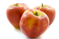 Apple trio Stock Photography