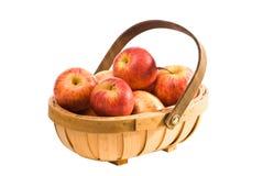 Apple Trug Stock Photos