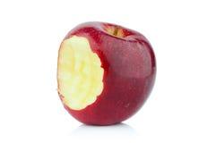 Apple tugga på Arkivfoto