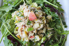 Apple tuna nut salad upclose. Healthy version of tuna salad on a bed of greens Royalty Free Stock Photos