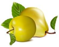 Apple und Birnen. Stockfoto
