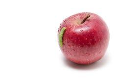 Apple und Endlosschraube Lizenzfreie Stockfotos