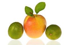 Apple und Kalk Stockbilder