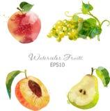 Apple, uva, pêssego, pera Imagem de Stock Royalty Free