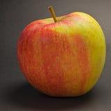 Apple varieties CHAMPION Stock Images