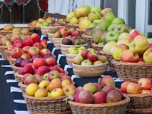 Free Apple Varieties On Display Stock Photo - 83424610