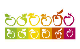 Apple varieties Stock Image