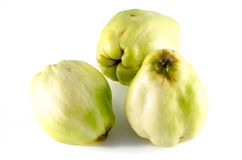 Apple variety called quince or cotogna oblonga Royalty Free Stock Images