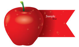 Apple vector Stock Image