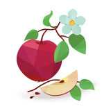 Apple vector Bild in der Origamiart Stockfotos