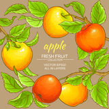 Apple vector frame. Apple branches vector frame on color background Royalty Free Stock Images