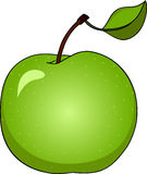 Apple. Vector illustration of green apple Royalty Free Stock Images