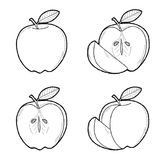 Apple. Vector Illustration Hand Drawn Fruit Cartoon Art Royalty Free Stock Photography