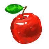 Apple Vector illustration  hand drawn  painted Stock Image