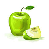 Apple Vector illustration  hand drawn  painted Royalty Free Stock Images