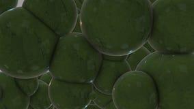 Apple verde sottrae fotografie stock libere da diritti
