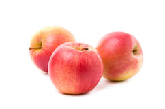 Apple vermelho e amarelo Imagens de Stock