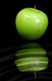 Apple vert Photos libres de droits