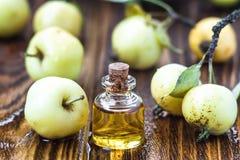 Apple vinegar in glass jar with ripe green fruit. Bottle of apple organic vinegar on wooden background. Healthy organic food. Apple vinegar in glass jar with Stock Photography