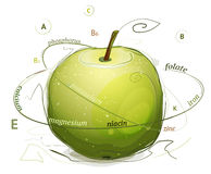 Apple vitamins and minerals illustration Stock Image