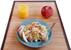 Apple walnut salad Royalty Free Stock Photo
