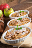 Apple Walnut streusel cake Royalty Free Stock Photo