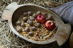 Apple and walnuts. An apple and walnuts in an old wooden basket Stock Photos