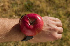 Apple Watch. A joke redneck apple watch made out of a red apple strapped to a wrist royalty free stock images