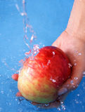 Apple and water. Washing apple with water stock photos