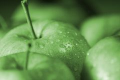 Apple and Water Drops. Wet apples with water drops Royalty Free Stock Images