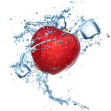 Apple with water splash vector illustration