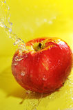 Apple and water splashes Stock Image