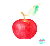 Apple watercolor food paint. Healthy fruit by hand draw illustration. organic. Stock Photo