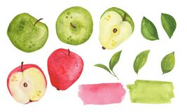 Apple watercolor set