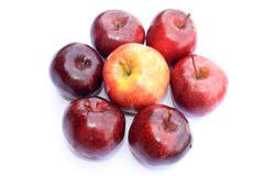 Apple on white background. Different shade apples on white background Stock Images