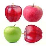 Apple on white background Stock Photos