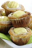 Apple and White Chocolate Muffins Royalty Free Stock Image