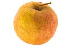 apple więdnięcie Obrazy Stock