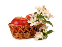 Apple in a wicker basket and flowers Stock Images